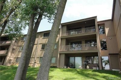 West Bloomfield, West Bloomfield Twp Condo/Townhouse For Sale: 3815 Lone Pine Road #301