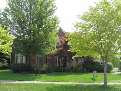 Novi Single Family Home For Sale: 24118 Elizabeth Lane
