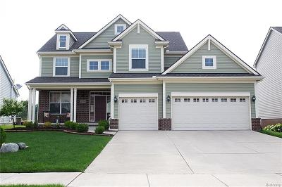 Milford Twp Single Family Home For Sale: 1290 Yellowstone Valley Drive