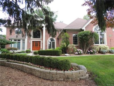 Rochester Hills Single Family Home For Sale: 2463 Ashford