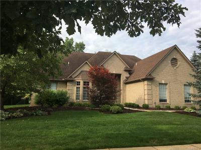 Novi Single Family Home For Sale: 25937 Arcadia Drive