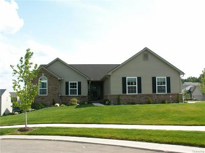 Macomb County, Oakland County Single Family Home For Sale: 8171 Sawmill Trail