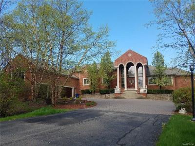 White Lake Single Family Home For Sale: 10700 Bogie Lake Road