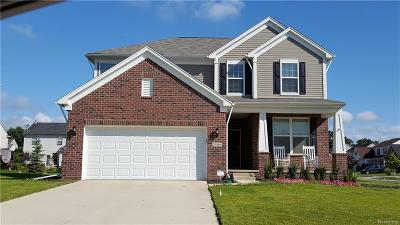 Novi Single Family Home For Sale: 25744 Oberlin Boulevard