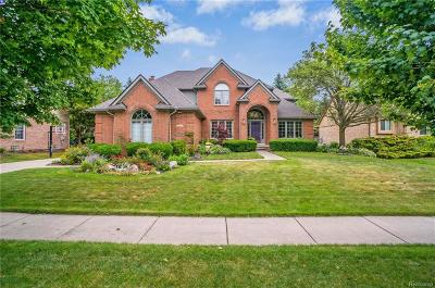 Novi Single Family Home For Sale: 21118 Chase Drive