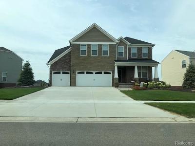 Novi Single Family Home For Sale: 25792 Oberlin Boulevard