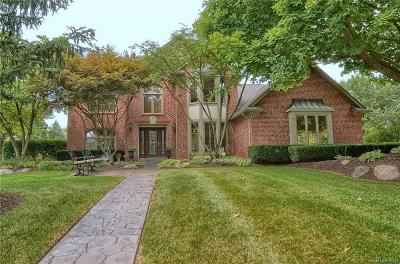 Troy Single Family Home For Sale: 6219 Carriage Trail Drive