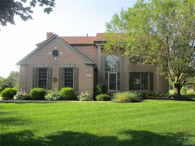 Canton Single Family Home For Sale: 47583 Fox Court