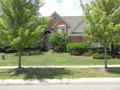 West Bloomfield Twp Single Family Home For Sale: 6886 Maple Creek Boulevard