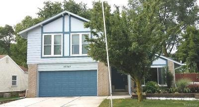 Novi Single Family Home For Sale: 42347 Park Ridge Road