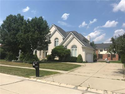 Sterling Heights Single Family Home For Sale: 2393 Lorenzo Drive