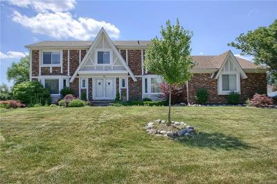 West Bloomfield Single Family Home For Sale: 3057 Winchester Road