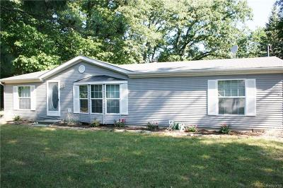 White Lake Single Family Home For Sale: 9342 Southeastern Street