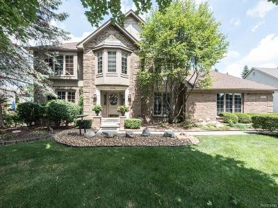 Farmington Hills Single Family Home For Sale: 39198 Horton Drive