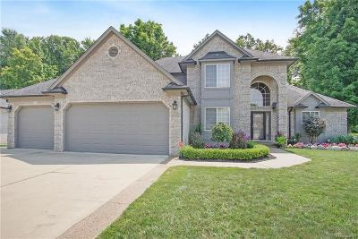 Chesterfield Twp MI Single Family Home For Sale: $435,000
