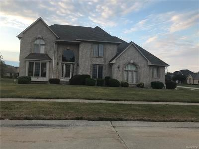Sterling Heights Single Family Home For Sale: 4399 Allegheny Drive