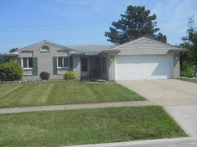 Woodhaven Single Family Home For Sale: 18776 Martin Pl