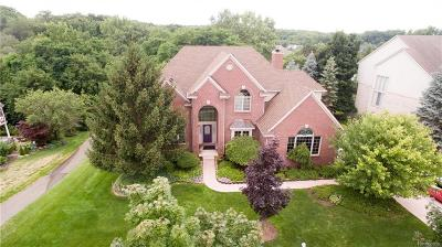 Northville Single Family Home For Sale: 16526 Brooklane Boulevard