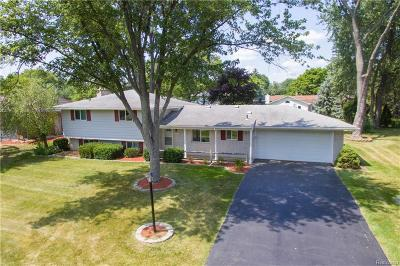Farmington Hills Single Family Home For Sale: 32466 Nestlewood Street