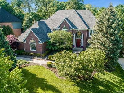 Northville Single Family Home For Sale: 17583 Stonebrook
