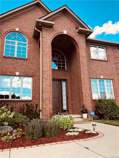 Novi Single Family Home For Sale: 29780 Martell Court