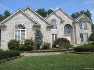 Troy Single Family Home For Sale: 2577 Songbird Drive