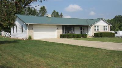 Genesee County Single Family Home For Sale