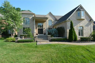 Novi Single Family Home For Sale: 47330 Baker Street