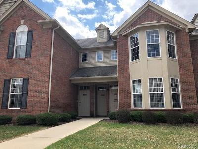Shelby Twp Condo/Townhouse For Sale: 13674 Silver Birch Circle