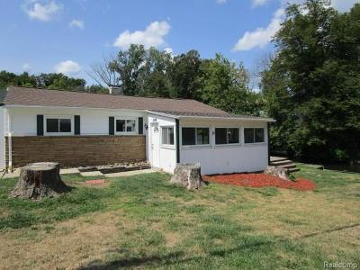 Brandon Twp Single Family Home For Sale: 2099 Palisades Drive