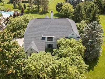 Oakland Twp Single Family Home For Sale: 4128 Oak Tree Circle