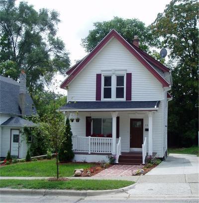 Ann Arbor Single Family Home For Sale: 113 W Summit Street