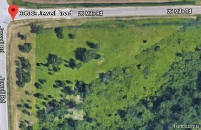 Washington Twp Residential Lots & Land For Sale: 60988 Jewell