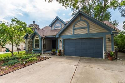 Troy Single Family Home For Sale: 144 Leetonia Drive