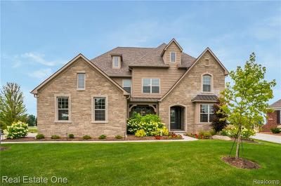 Lyon Twp Single Family Home For Sale: 23639 N Crooked Tree Court
