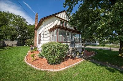 Huron Twp Single Family Home For Sale: 36906 Violet Street
