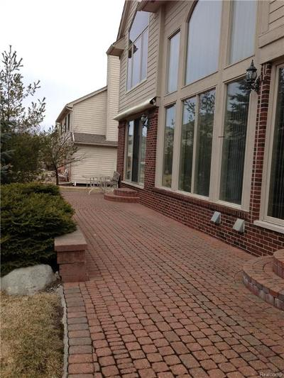 West Bloomfield, West Bloomfield Twp Single Family Home For Sale: 6604 Shadowood Drive