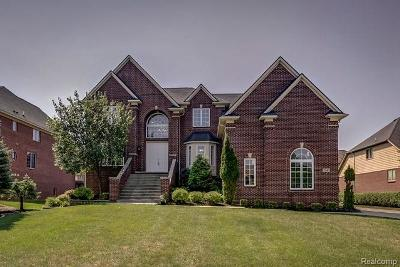 West Bloomfield Twp Single Family Home For Sale: 7341 Essex Drive