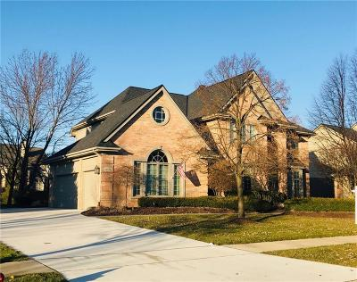 Northville Single Family Home For Sale: 44174 Greenview Lane