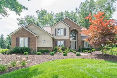 Lyon Twp Single Family Home For Sale: 57673 Hidden Timbers Drive