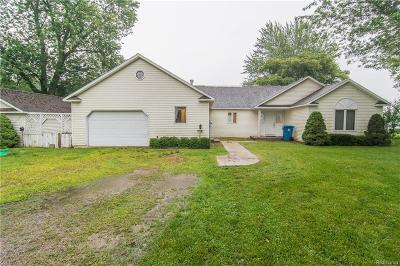 Hillsdale County Single Family Home For Sale: 101 Lakeview Drive