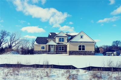 Hartland Twp Single Family Home For Sale: 1325 Starlight Court