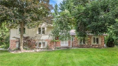 Bloomfield Twp Single Family Home For Sale: 4576 Niagara Lane