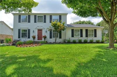 Northville Single Family Home For Sale: 41864 Sutters Lane