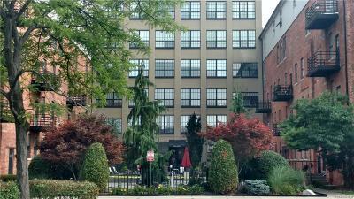 Detroit Condo/Townhouse For Sale: 6533 E Jefferson Avenue