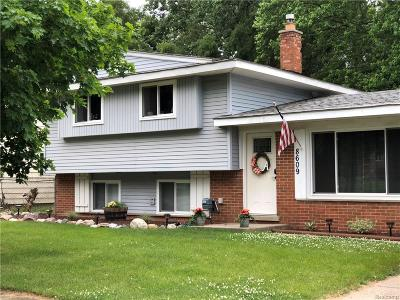 Commerce Twp Single Family Home For Sale: 8609 Palomino Drive
