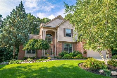 Rochester Hills Single Family Home For Sale: 727 Lake Ridge Road