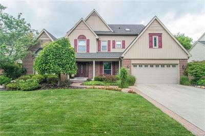 Novi Single Family Home For Sale: 45667 Irvine Drive