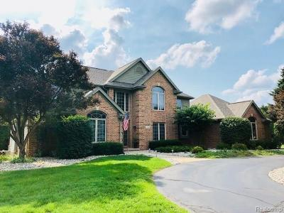 Lake Orion, Orion Twp, Clarkston, Independence Twp, Oxford Single Family Home For Sale: 1341 Valleyview Drive