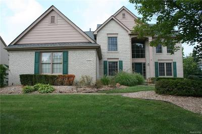 Novi Single Family Home For Sale: 45595 Addington Lane